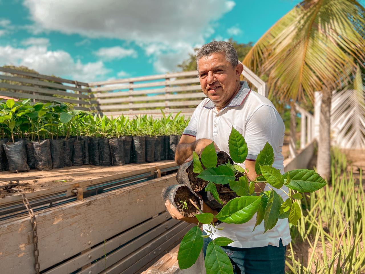 Governo Municipal de Jacaraú realiza plantio de mudas de árvores em áreas para preservação.